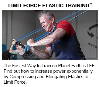 Limit Force Elastic Training - Sub Banner